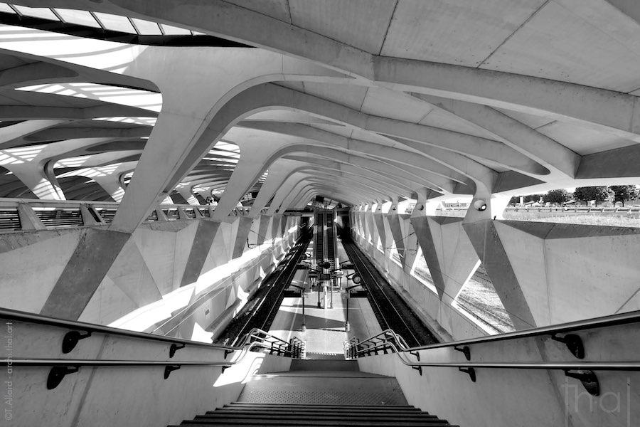 Architecture intérieure de la gare TGV Lyon Saint-Exupery-deconfinement